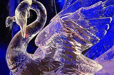 v-kieve-projdet-festival-novogodnix-elok-i-skulptur-iz-lda