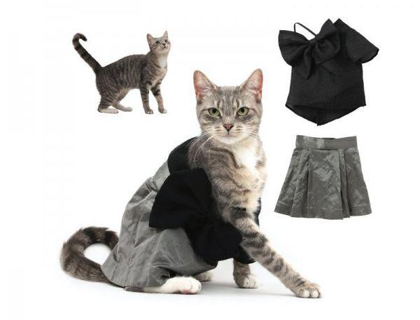 cats, 2011, calendar, ikiev
