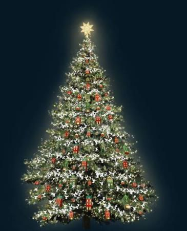 головна ялинка країни, новий 2015 рік, різдво,як відсвяткувати новий рік та різдво, софійська площа