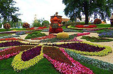tysyachi-cvetov-raskrylis-na-pevcheskom-pole